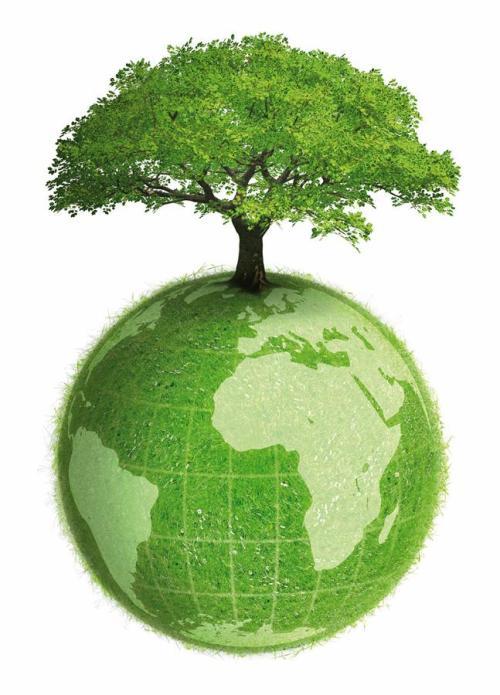 5 junio_dia_mundial_del_medio_ambiente